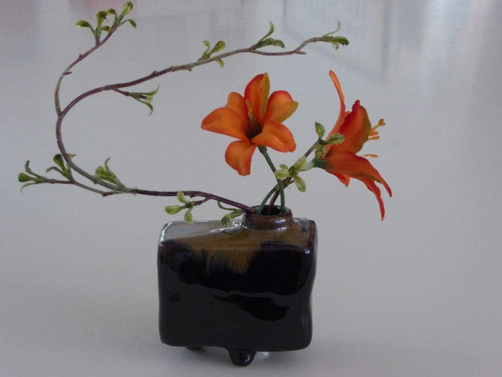 Amazon Com Yokohamausa Japanese Small Rectangle Pacific Kelp Forest Ikebana Flower Arrangement Vase Home Kitchen