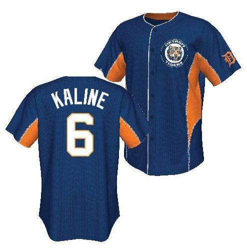 Majestic Al Kaline Cooperstown Team Leader Baseball Jersey (M=40)