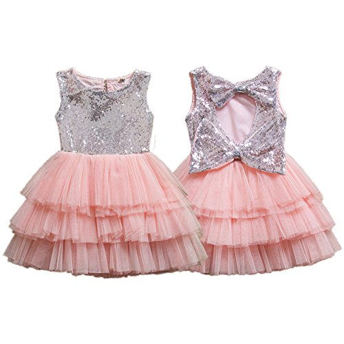 IIYoYo A Line Toddler Baby Girls Kids Sequins Flower Wedding Princess Dress Vintage Tulle Tutu With Big Bowknot For Easter (Silver Pink, 2-3T)