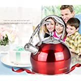 Whistling Tea Kettle - 3 Quart Tea Pot Stainless Steel Tea Kettle for Electric or Gas Stovetop - Cool Cute Modern Tea Kettle Stove Top Teapot Hot Water Whistle - Small Retro Metal Tea Kettle