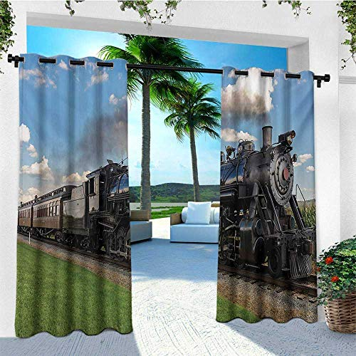 leinuoyi Steam Engine, Outdoor Curtain Set, Vintage Locomotive in Countryside Scenery Green Grass Puff Train Picture, Fabric by The Yard W108 x L108 Inch Blue Green Black