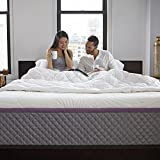 Sleep Innovations Alden 14-inch Memory Foam Mattress, Queen