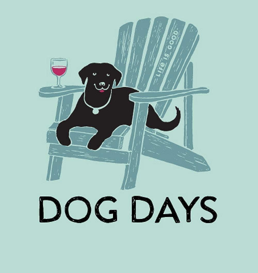 51bd21914defa6 Life is Good Women's Dog Days Crusher Vee Shirt Bermuda Blue at Amazon  Women's Clothing store: