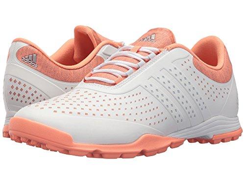 大統領肉腫給料(アディダス) adidas レディースゴルフシューズ?靴 Adipure Sport Core White/Aero Blue/Chalk Coral 11 (28cm) B - Medium
