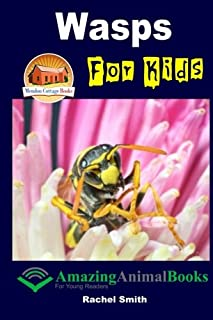 Wasps For Kids