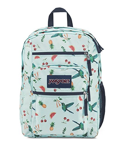 1 Back Pocket (Jansport Unisex Big Student Back Pack Sweet Nectar One Size)