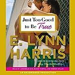Just Too Good to Be True: A Novel   E. Lynn Harris