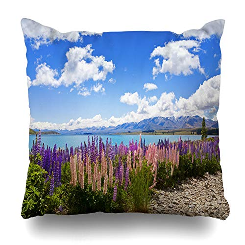 Ahawoso Throw Pillow Cover Square 16x16 Spring Purple Zealand Lupin Wildflowers On Shore Lake Tekapo Nature New Parks Blue Sky Flowers Blossom Zippered Cushion Case Home Decor Pillowcase