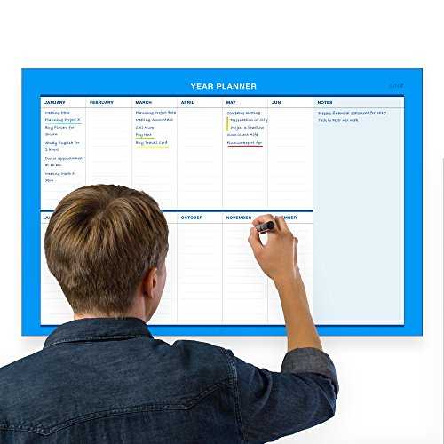 Erasable Wall Annual Calendar Planner Generic Horizontal//17-Inch-by -28-Inch - Light Blue by ExImCenter