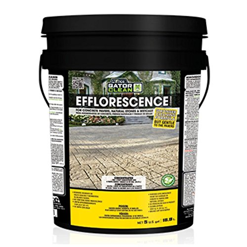 Alliance Gator Clean Efflorescence Cleaner 5 Gallon for Pavers & Natural Stone