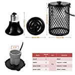 Qslqyb Reptile Heat Lamp with Guard, Ceramic Heat Emitter Basking Heater Lamp for Turtles, Chicks, Lizard, Snake with Power Switch&Anti-Biting Pipe Design, 110V-75W/100W