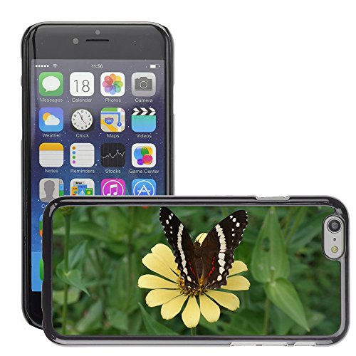 "Bild Hart Handy Schwarz Schutz Case Cover Schale Etui // M00135248 Blumen Schmetterlings Frühling Natur // Apple iPhone 6 PLUS 5.5"""
