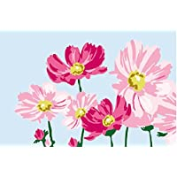 DIY Oil Painting, Paint by Number Kits for Kids - Beautiful Flowers, 20x30cm