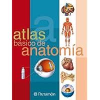 Atlas básico de Anatomía (Atlas básicos)