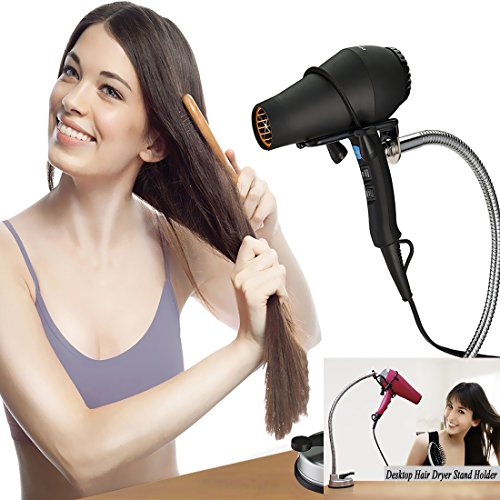 Pard Desktop Stainless Rotation Hairdryer product image