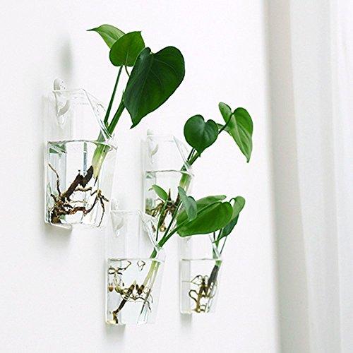 Mkono 2 Pack Wall Hanging Plant Terrarium Glass Planter, Rectangle by Mkono (Image #2)