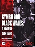 img - for CYMRU DDU / BLACK WALES: A HISTORY: A HISTORY OF BLACK WELSH PEOPLE book / textbook / text book