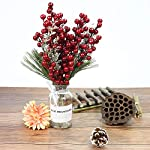 Benavvy-Red-Berries-Artificial-Fruit-20-Pack-Red-Berry-Stems-for-Christmas-Tree-Ornament-Holiday-DIY-Craft-Home-Decor