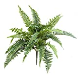GIVESURPRISE Artificial Fern 19-Inch Decor Plant Artificial Nephrolepis
