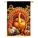 Harvest Turkey 2-Sided Vertical Flag