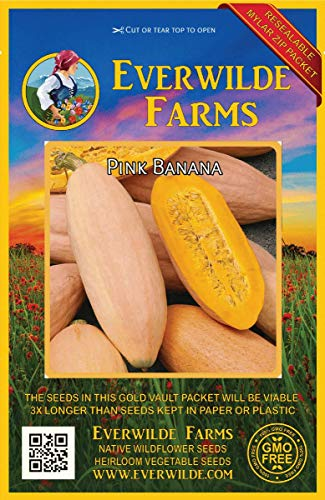 (Everwilde Farms - 40 Pink Banana Winter Squash Seeds - Gold Vault Jumbo Seed Packet)