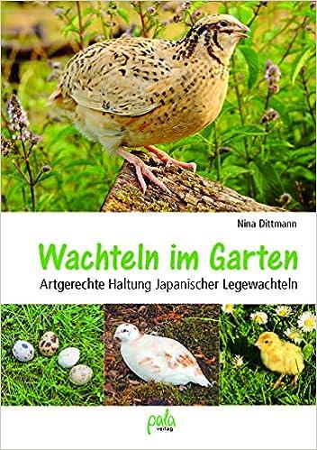 Wachteln im Garten: Artgerechte Haltung Japanischer Legewachteln