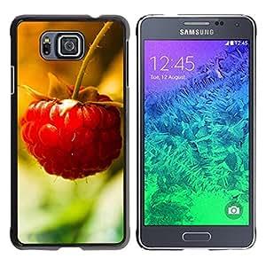 Be Good Phone Accessory // Dura Cáscara cubierta Protectora Caso Carcasa Funda de Protección para Samsung GALAXY ALPHA G850 // Fruit Macro Raspberry Lonely