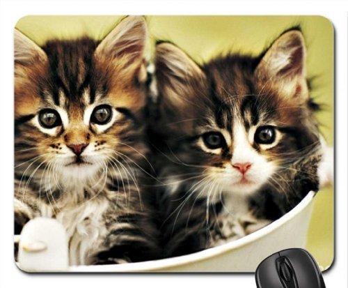 Hale Mouse - Kittens by Rachael Hale Mouse Pad, Mousepad (Cats Mouse Pad)