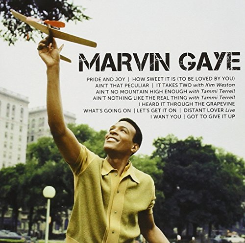 Marvin Gaye - Icon - Zortam Music