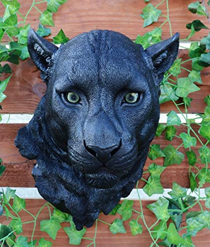 Ebros Gift Large Black Panther Head Wall Decor Plaque 16″Tall Taxidermy Art Decor Sculpture Nocturnal Predator Jaguar Wall Bust Plaque Home Decorative Jaguar