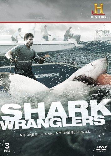 shark wranglers - 4