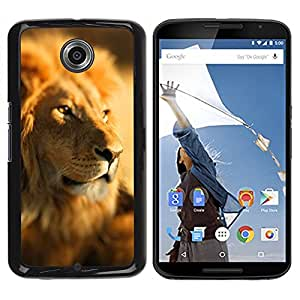 Be Good Phone Accessory // Dura Cáscara cubierta Protectora Caso Carcasa Funda de Protección para Motorola NEXUS 6 / X / Moto X Pro // Lion Africa Savannah Jungle Leader Pack