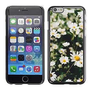 Margaritas del campo del verano Sun Verde Naturaleza - Metal de aluminio y de plástico duro Caja del teléfono - Negro - Apple (4.7 inches!!!) iPhone 6 / 6S