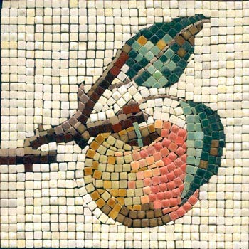 Aquila 15x15 cm Mosaico Kit