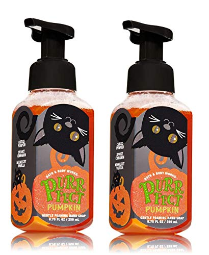 Bath and Body Works Purrfect Pumpkin Gentle Foaming Hand Soap - Pair of 2 - Sweet Cinnamon Pumpkin Scent with Halloween Black Cat Label ()