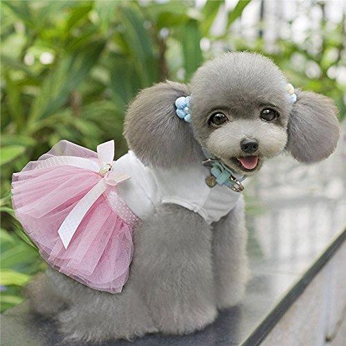 Yushangtong-au Animal Rose Minuscule Petite Jupe En Dentelle Robe De Princesse Chien Chiot (s, Rose)