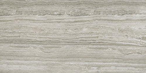 """Emser Tile F45TERRGR1224 """"Terrane"""" Porcelain Tile, 12"""" x 24"""", Gray"""