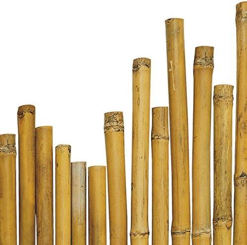 25 cañas de bambú. Medidas: 150 cm x 24-26 mm de diámetro. Para ...