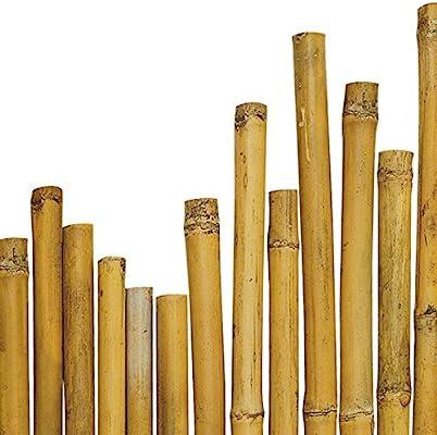 Arredogiardini - Cañas de Bambú - Medidas 180 cm de longitud - 28-30 mm de diámetro - Ideales para plantas, agricultura, huertos, decoraciones, estructuras, etc - 25 unidades: Amazon.es: Jardín