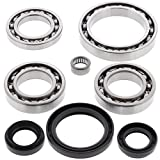 All Balls 25-2045 REAR Differential Bearing Seal Kit for Yamaha RHINO 450 660, Others