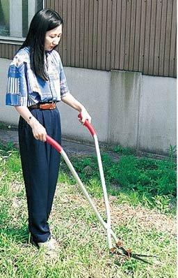 芝刈りハサミ 立作業用 芝生雑草 刈込バサミ [その他] B004U8JGY4