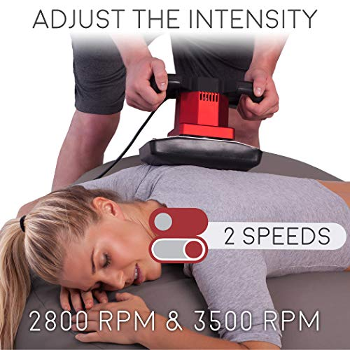 Vibe Dual Speed Electric Professional Massager with 2-Pack
