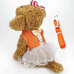 BUYITNOW Cute Small Dog Dress Harness Leash Pet Lace Tutu Skirt Mesh Vest Harness