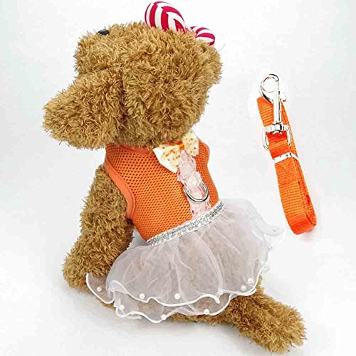 BUYITNOW Cute Small Dog Dress Harness Leash Pet Lace Tutu Skirt Mesh Vest (Harness Dress Clothes)