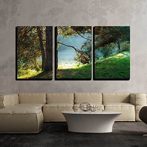 (wall26 - 3 Piece Canvas Wall Art - Pine Tree and Sun Rays Through The Branches at Misty Morning - Modern Home Decor Stretched and Framed Ready to Hang - 16