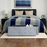 SONGMICS Storage Ottoman, Padded Bench, Bed End