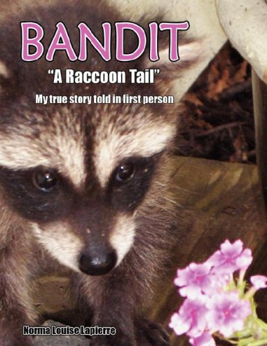 BANDIT ''A RACCOON TAIL''