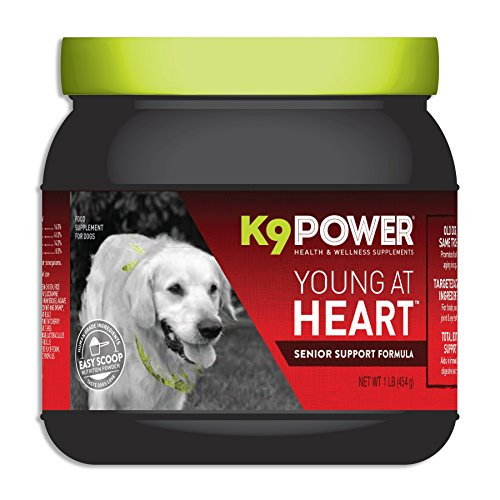 K9-Power Young at Heart - Nutritional Support Formula for Senior Dogs - 1 Pound