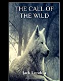 Image of The Call of the Wild: Illustrated