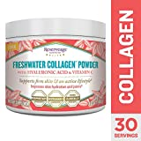 Reserveage - Freshwater Collagen Powder with Hyaluronic Acid and Vitamin C